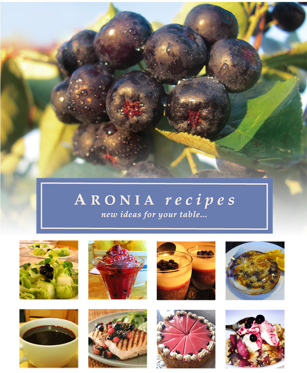 27 Recipes Ideas Using Aronia berries; with fresh greens, smoothies, parfaits, pancakes, teas, cakes, berry cobblers and with halibut